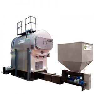 Парни биомаса